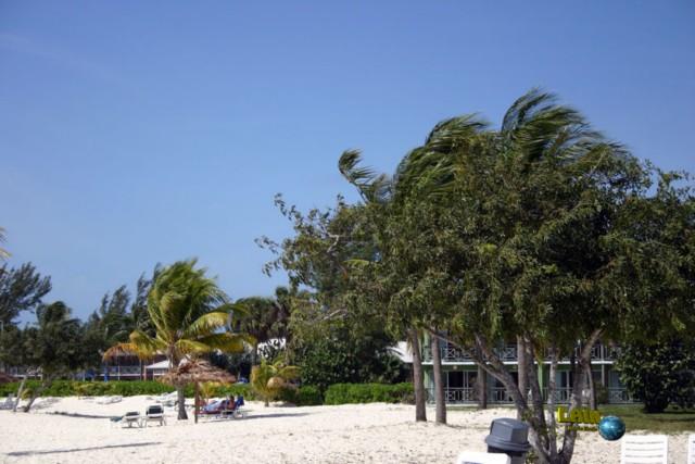 Viva Wyndham Fortuna Beach Resort / Grand Bahamas 2008