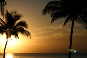 Ein Tag auf den Bahamas