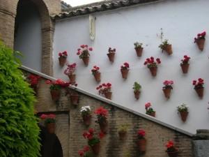 Blumentöpfe an den Wänden in Cordoba