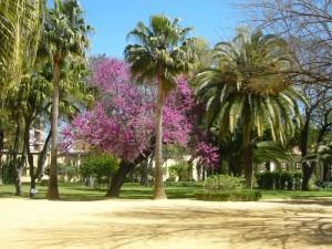 Garten der königlichen Hofreitschule in Jerez