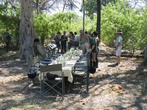Lunch mitten im Busch