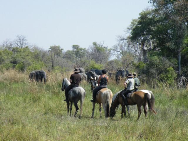 Botswana-Reise-Tipp: Reiten im Okavango Delta