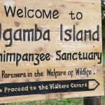 Willkommen auf Ngamba Island