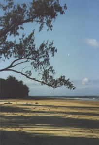 Strand am Cape Tribulation