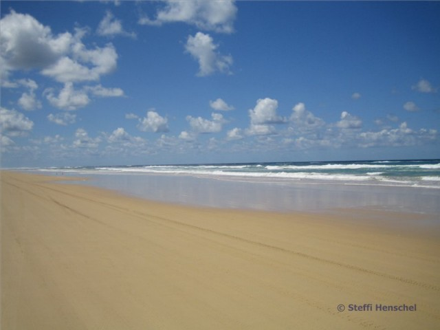 Australien-Tipp: Fraser Island 