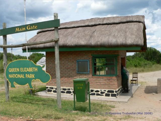 Uganda Reise Tipp: Tierbeobachtung im Queen Elizabeth Nationalpark