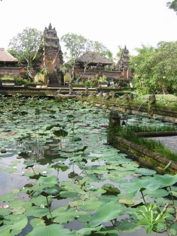 Indonesien Reise Angebot - Java, Bali, Lombok mit 5 Tage Bootsausflug zu den Komodo Waranen