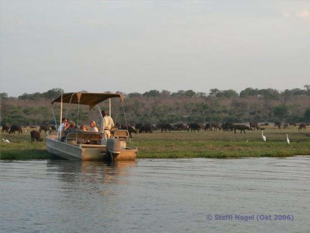 Bootstour auf dem Chobe Fluss