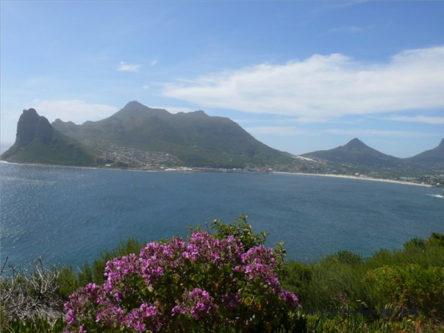 Blick auf Hout Bay