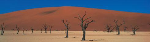 Rundreise durch Namibia von Windhoek über die Namib Sossusvlei Swakopmund zur Etoschapfanne