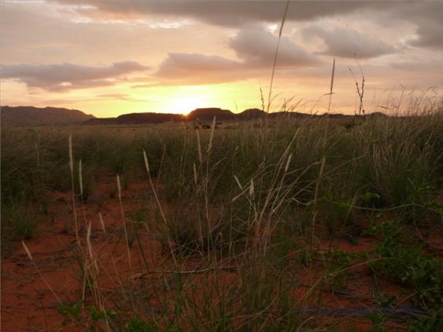 Reise DVD Namibia - Weites Land im Südwesten von Afrika