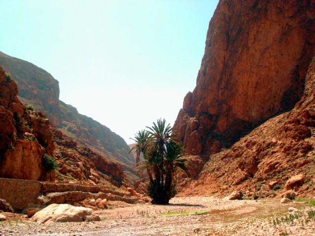 Marokko–Reisebericht: Klettern in der Todraschlucht