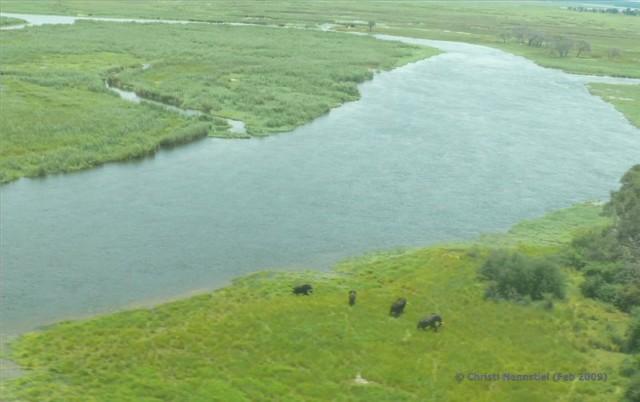 Namibia: Flugsafari von Opuwo über den Caprivi zur Namushasha Lodge