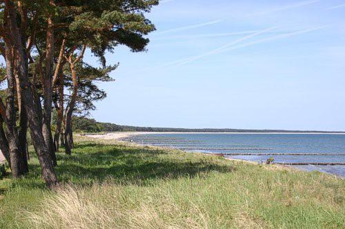 Familienurlaub im Sommer in Glowe auf Rügen