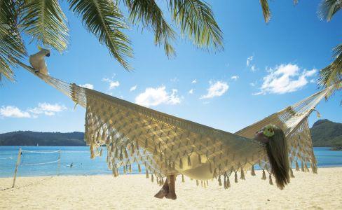 Der beste Job der Welt auf Hamilton Island in Queensland Australien vergeben