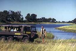 "Namibia-Safari ""Elefantenmutter gesucht!"""