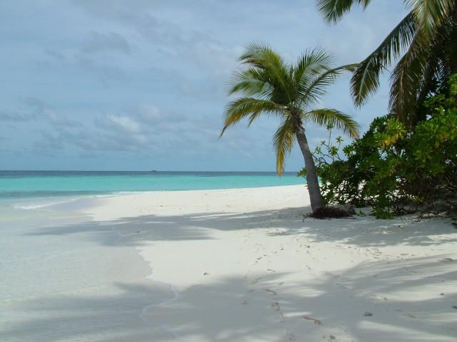 Traum Urlaub auf den Malediven-Insel Angaga