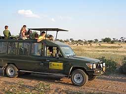 Eines unserer Safarifahrzeuge