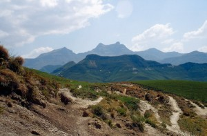 Wilde Drakensberge