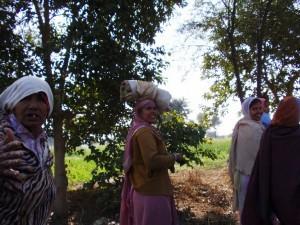 Frauenleben in Rajasthan