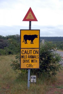 Hwange Nationalpark - Warnschild Büffel