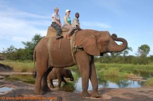 """Simbabwe-Urlaub -Victoria Falls- Elefanten-Reiten - """"Familienfoto"""""""