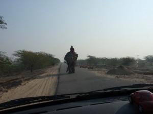 Sudhu mit Elefant