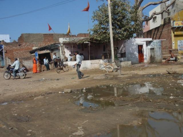 Indien Reiseerlebnis- von Ranthambhore nach Fathepur Sikri und Agra