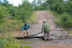 Hwange Nationalpark - Masuma - Hindernis beseitigen
