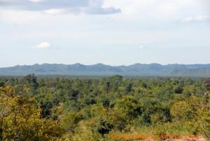 Simbabwe - Hwange Nationalpark - Landschaft