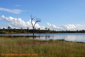 Simbabwe - Hwange Nationalpark - Mandavu Dam