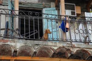 Kuba - Havanna - Balkon