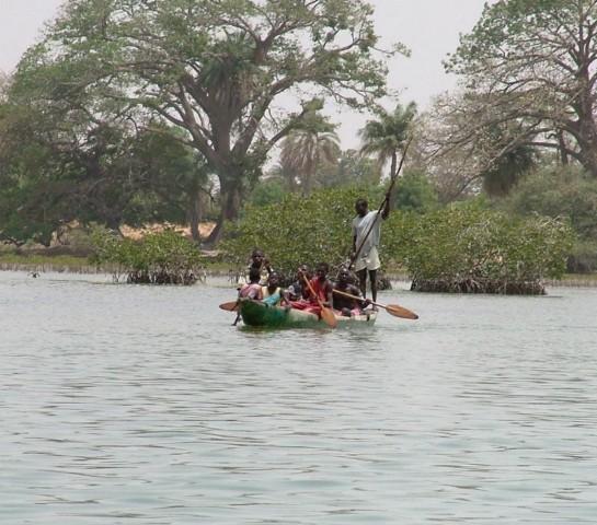 Völker und Vögel des Sine-Saloum-Delta im Senegal – eine Reise in eine faszinierende Flusslandschaft !