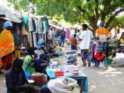 Wochenmarkt (lomo)