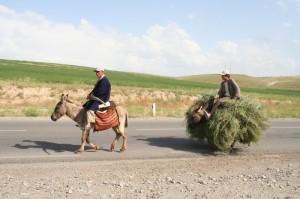 Usbekistan Impressionen