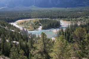 Der Bow-Fluss im Banff-Nationalpark