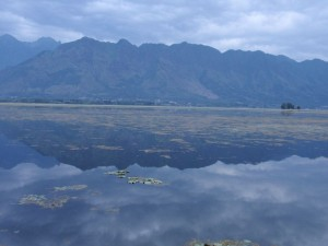 Dal See und Himalaya