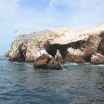 Peru Ferienrundreise von der Insel Ballestas bis in die Wüste von Nasca