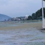 Indien Abenteuerreise, die Mogulgärten von Srinagar in Kaschmir