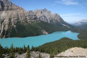 Der Peyto Lake Am Icefields Parkway zwischen Banff- und Jasper-Nationalpark