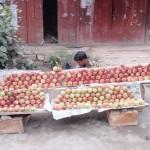 Abenteuerreise über die Berge von Kaschmir nach Srinagar
