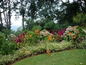 wunderschön angelegter Blumengarten