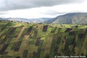 Bewirtschaftete Felder im Andenhochland