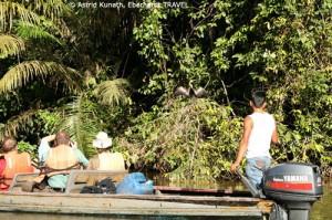 Bootsausflug durch den Regenwald im Cuyabeno-Reservat