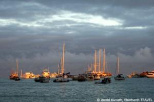 Am Pier von Puerto Ayora auf der Galapagos-Insel Santa Cruz
