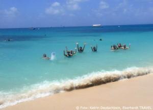 Wir badeten im glasklaren Wasser am Great Barrier Reef
