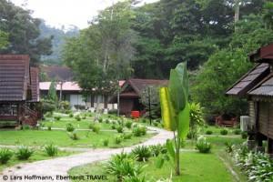 Das Mutiara Taman Negara Resort mitten im Regenwald Malaysias