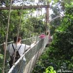 Rundreise Malaysia - Abenteuer Regenwald, Kuala Lumpur, Taman Negara Nationalpark