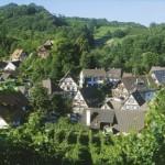 Ihr Urlaubs- & Wellnesshotel im Schwarzwald