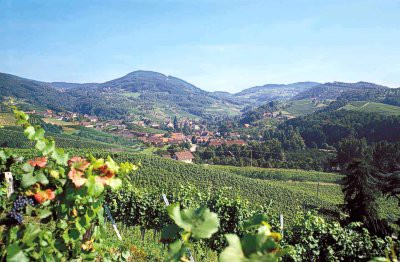 Die Landschaft um Sasbachwalden